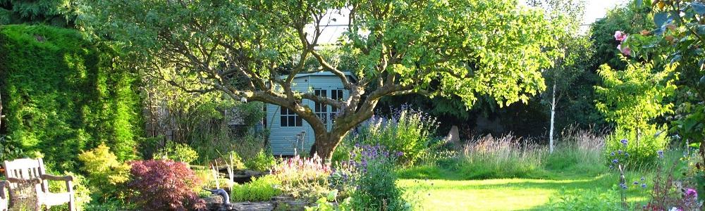 Het inrichten van een landelijke tuin